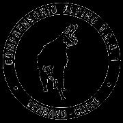 Logo sito VCO1